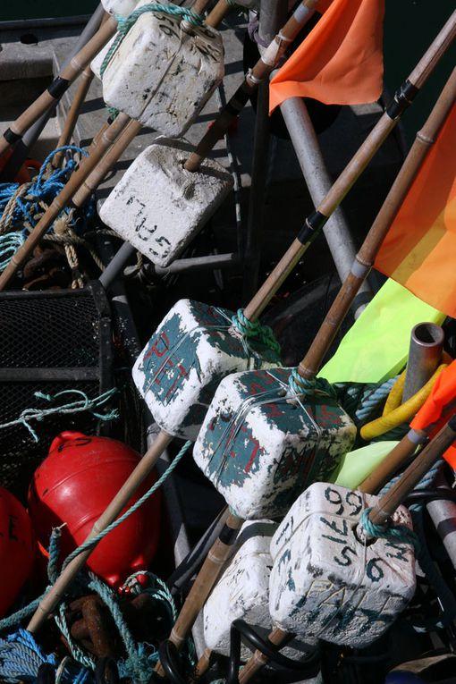 Le monde de la Pêche sur la Côte Atlantique è Photos Thierry Weber Photographe de Mer