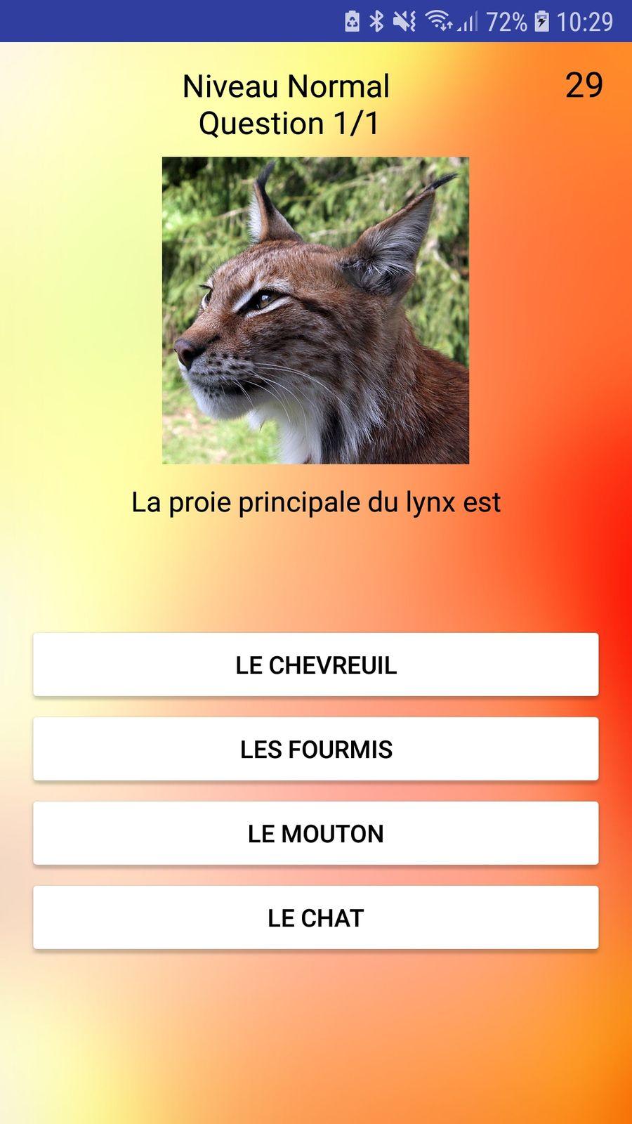 Making Of Application Mobile Quiz sur les félins Partie 1