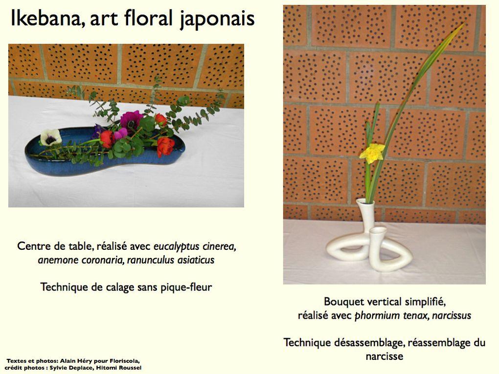 Album - Art Ikebana