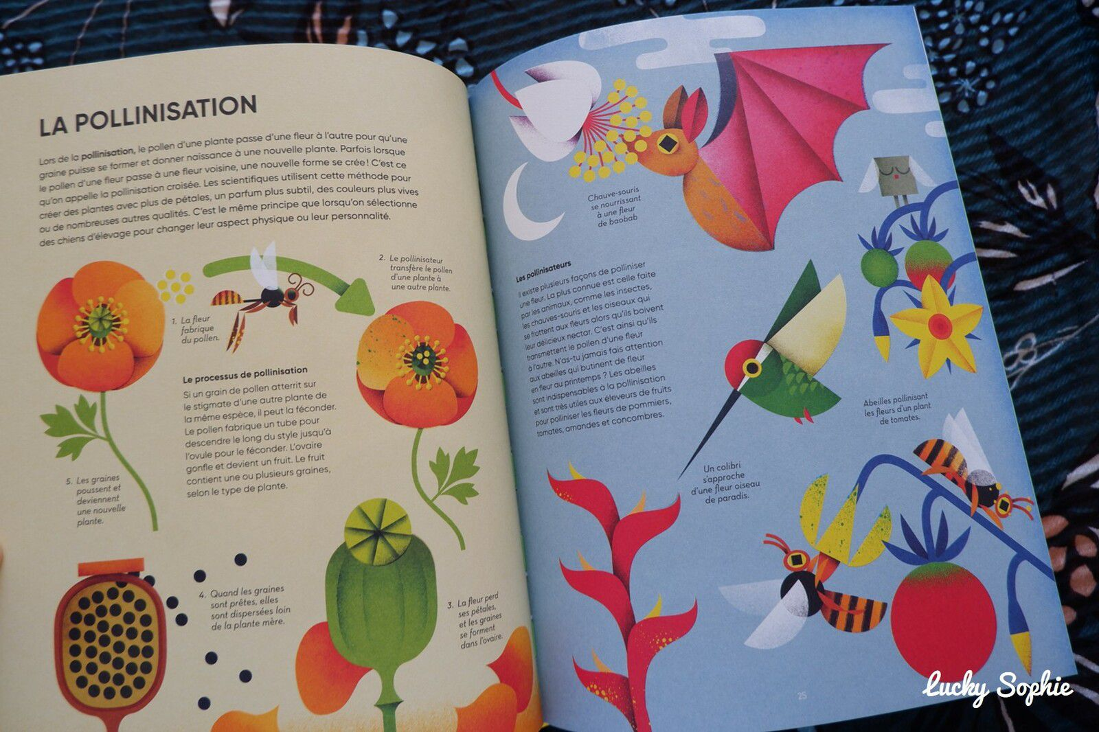 Lectures et activités pour petits écolos #4