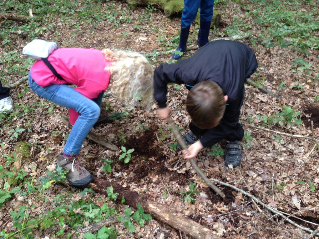 CE1-CE2 Morgane : c'est le printemps dans la forêt