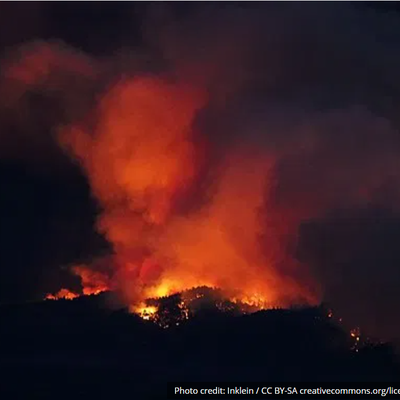 USA : l'agriculture fait preuve de résilience face aux flammes