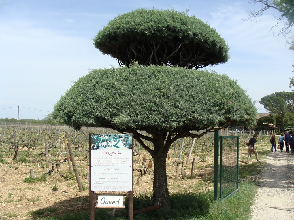 Sortie-jardin--Eric-Borja