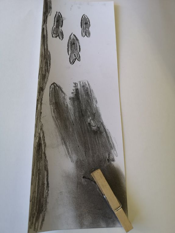 Ombres portées d'objets usuels se transformant, dessin, collageetc…