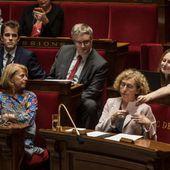 """Le projet de loi """" avenir professionnel """" définitivement adopté par le Parlement"""