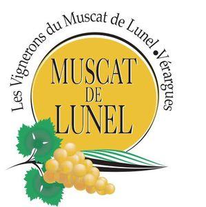 Le Muscat de Lunel de Vérargues se joint à moi pour mes 4 ans du blog .