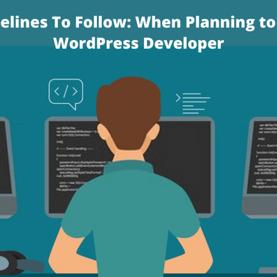 Guidelines To Follow: When Planning to Hire WordPress Developer