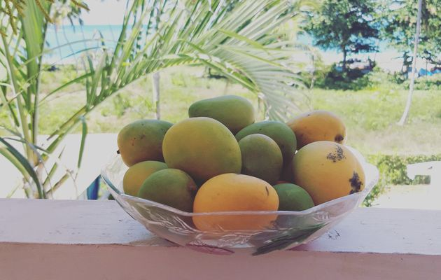 Index des recettes à la mangue