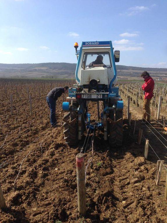 Labour: le Parti de travailler les sols?