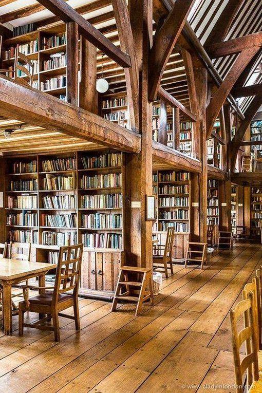 Bibliothèques et librairies remarquables !