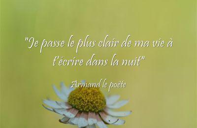 Fulguration - Armand le Poête