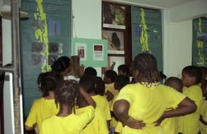 Bilans expo 2004 2005 sur le Pic de la Guadeloupe