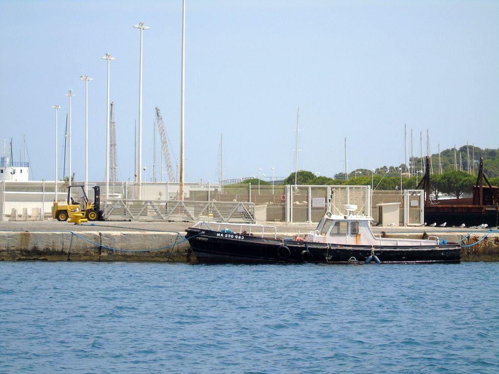 TIBOULEN , vedette de service portuaire à quai à la Seyne sur Mer  le 07 aout 2017