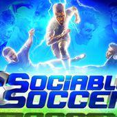 Sociable Soccer on Steam