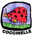 marie-coccinelle