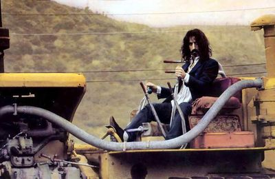 Top of the Flops of the Pops of the Blogs : Frank Zappa