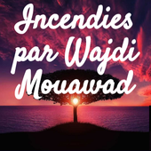 Incendies par Noan by ivoixiroise+20202021 on Genially
