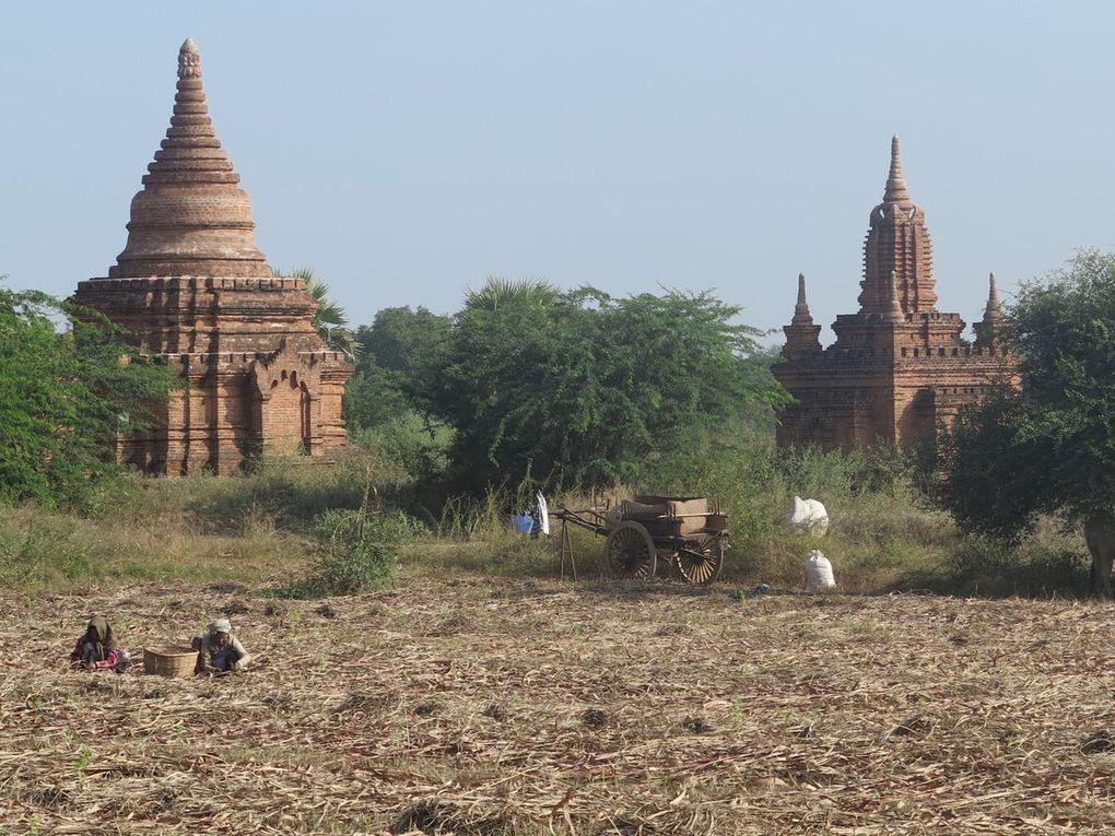 Bagan est un site religieux du XIIème siècle, la plaine aux mille pagodes, stupas, monastères, où chacun ressent une étrange sensation liée à la spiritualité des lieux, bien qu'ils soient touristiques: à découvrir absolument ! On pense à Angkor Vat pour ce qui est de la beauté de ce grand site.