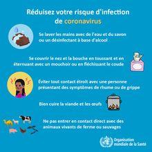 RDC : les dernières nouvelles de Kin ' et des autres villes à l'ère de Cornavirus #8
