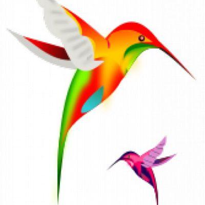 Le Colibri Lit