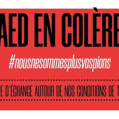 Mardi 19 janvier : grève des AED... nous ne sommes plus vos pions !