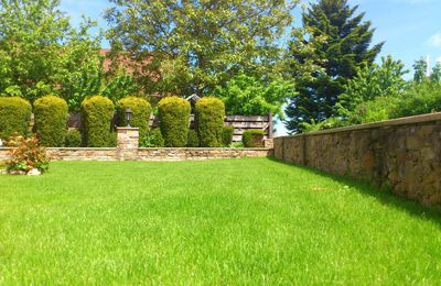 Improving the Aesthetics of Your Residential Property With Landscaping Solutions