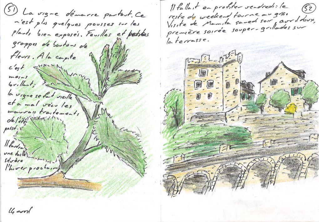 Epesses, Lavaux: le Dézaley et la Tour de Marsens