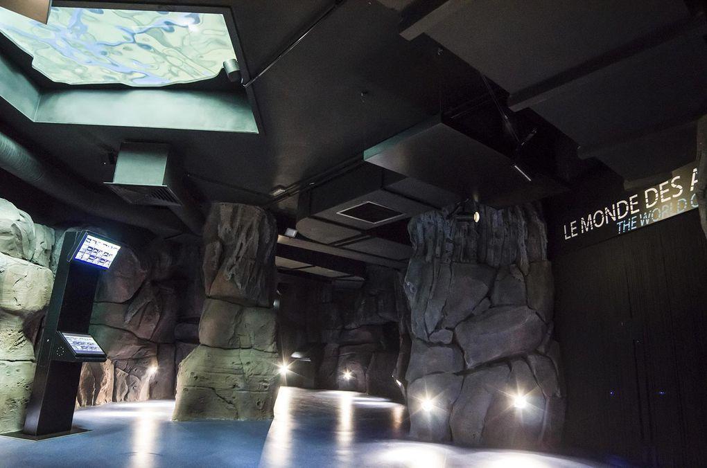 Nausicaa - Centre de la Mer : la scénographie des aquariums.