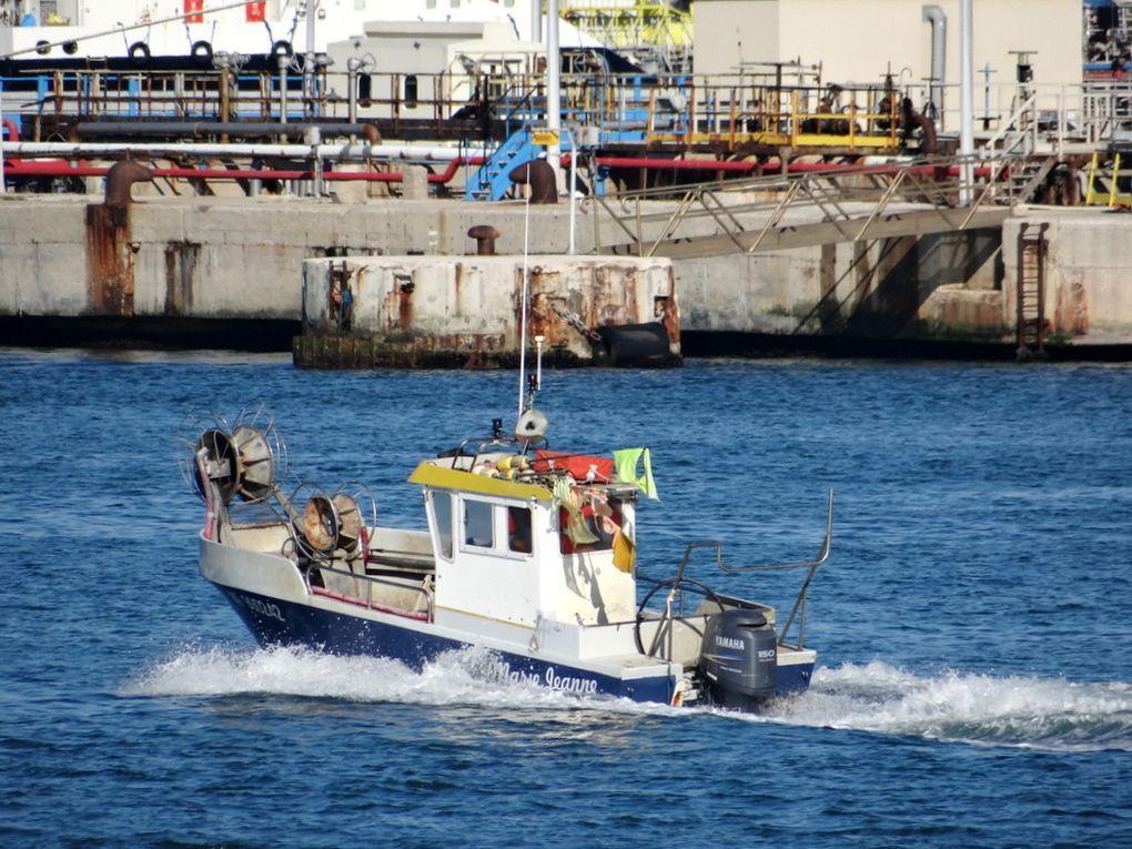 MARIE JEANNE  , MT 900242  , dans la rade de Port de Bouc  et dans le golfe de Fos sur Mer le 21 avril 2015