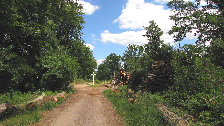 le carrefour des Loups