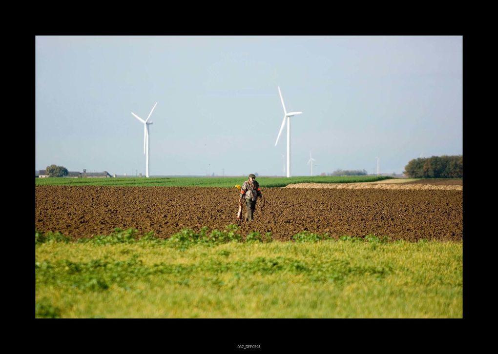 Album - Poupry-2010--F.-Jacquet