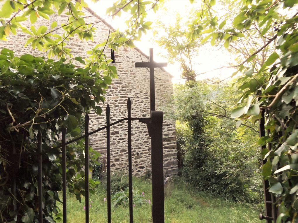 Le cimetière des Infournats où les orchidées sauvages fleurissent les tombes