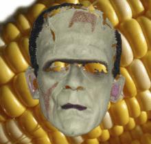 Phobie des OGM ? Les vrais Frankenfoods pourraient vous surprendre !