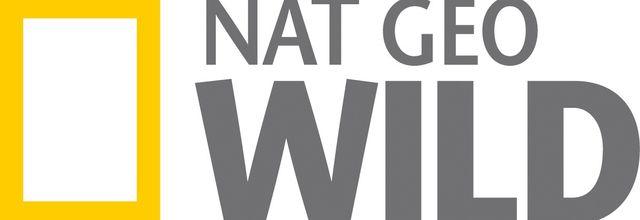 Dès le 16 décembre, partez en Wild Trip sur Nat Geo Wild