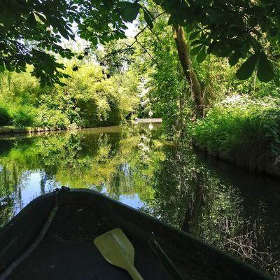 Un petit tour en barque dans les hortillonnages d'Amiens
