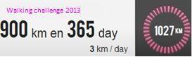 Bilan du Walking challenge 2013