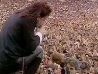 U2 Wembley-London -Live Aid 13/07/1985