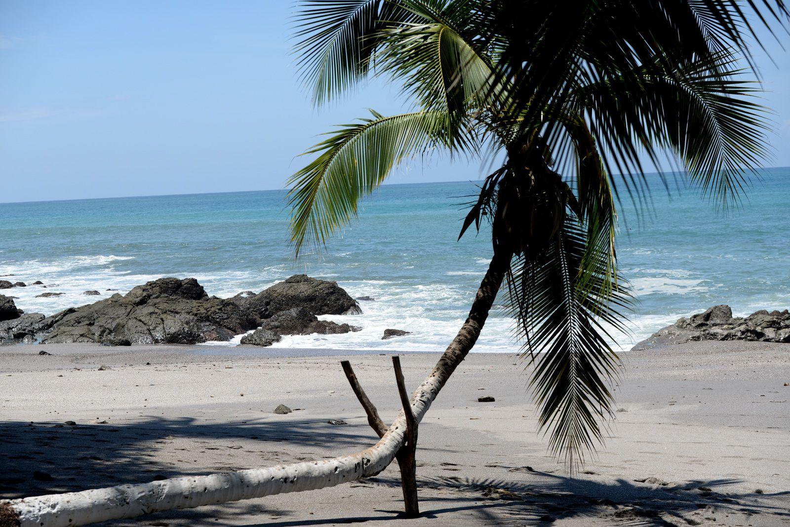 Costa Rica / 2 / il est 08h15, nous sommes le 2 Novembre 2020