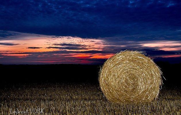 Le soleil se lève sur la campagne bonauxilienne...