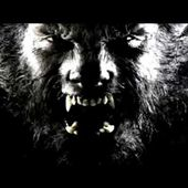 Rockin' Ryan And The Real Goners - I'm The Wolfman