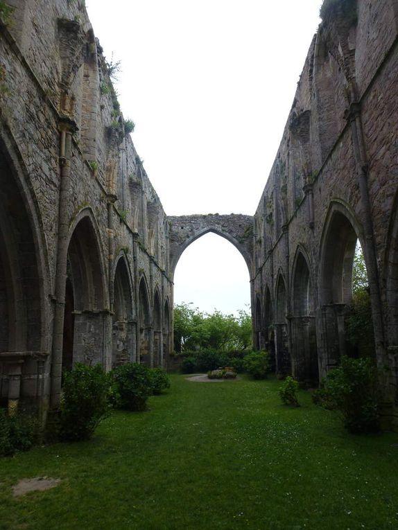 Séjour à Louannec (côtes d'Armor) au camping Ernest Renan. A proximité de Perros Guirec, Ploumanac'h et sa côte de granit rose, Trégastel et la Presqu'île Renote avec aussi de très belles pierres.  En passant par Paimpol, l'abbaye de Beauport...