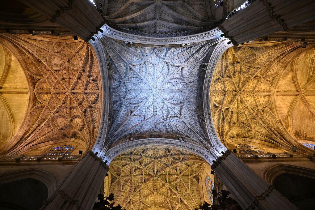andalousie 2021 : la cathédrale de Séville ...