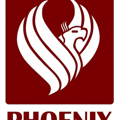Phoenix Control Systems Limited