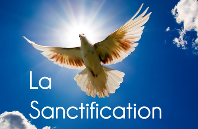 5 questions à propos de la sanctification (par David Powlison)