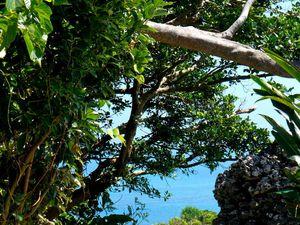 Okinawa : Grande île :  Centre-ouest : Les îles reliées par les routes sur la mer