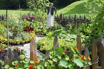 Débutants en permaculture ou confirmés, voici un méthode tres facile pour les pommes de terre…bio! Allez à vous de jouer, c'est simple et sansefforts! Publié parCarolyonne89