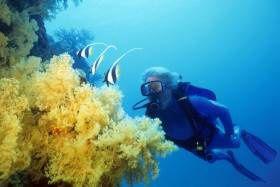 Exister, savoir, s'émerveiller : citation de Jaques-Yves Cousteau