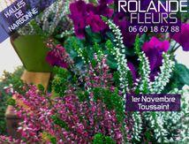 Toussaint 1er novembre