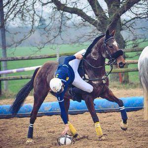 si le horse ball était une passion : Nathan FABRE