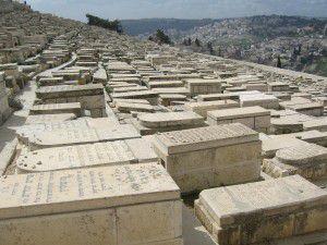 2011 février Jérusalem et la Palestine